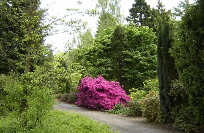 05-08-Botanische tuinen