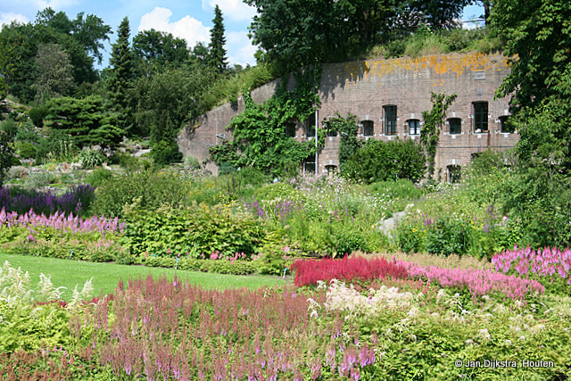 utrecht_botanische_tuinen_3